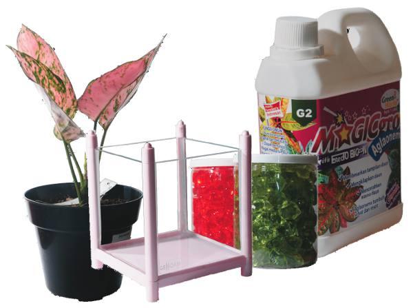 Bahan-bahan bercocok tanam hidroponik untuk tanaman hias