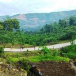 Lahan bekas tambang seluas 65 ha milik Holcim yang diubah menjadi hutan pendidikan