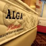 Alga Platinum Pillowtop Pocketspring