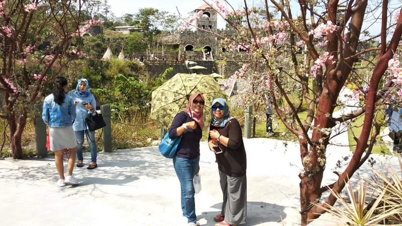 Ada spot selfi dengan latar belakang bunga sakura